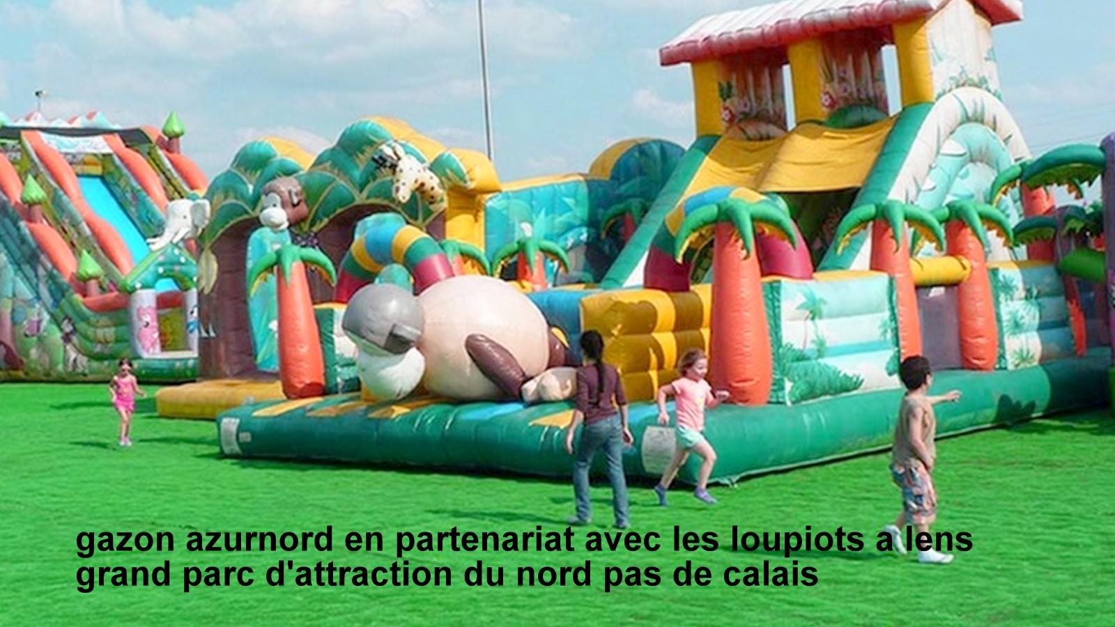 Image partenaire les loupiaux lens - gazon azurnord